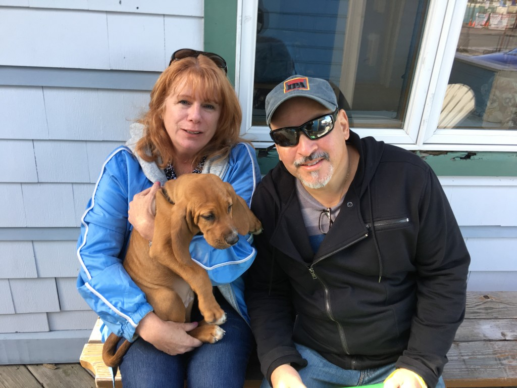 buzz adopted