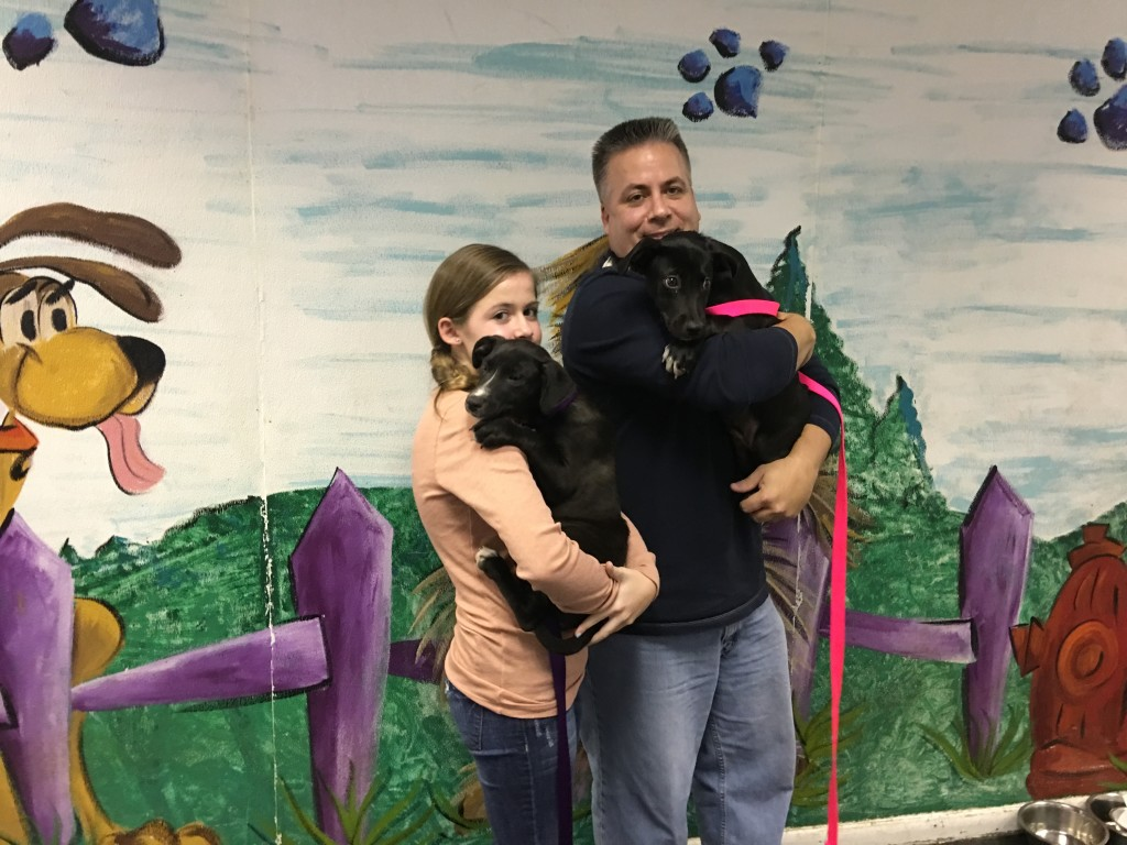 marci and lucy adopted