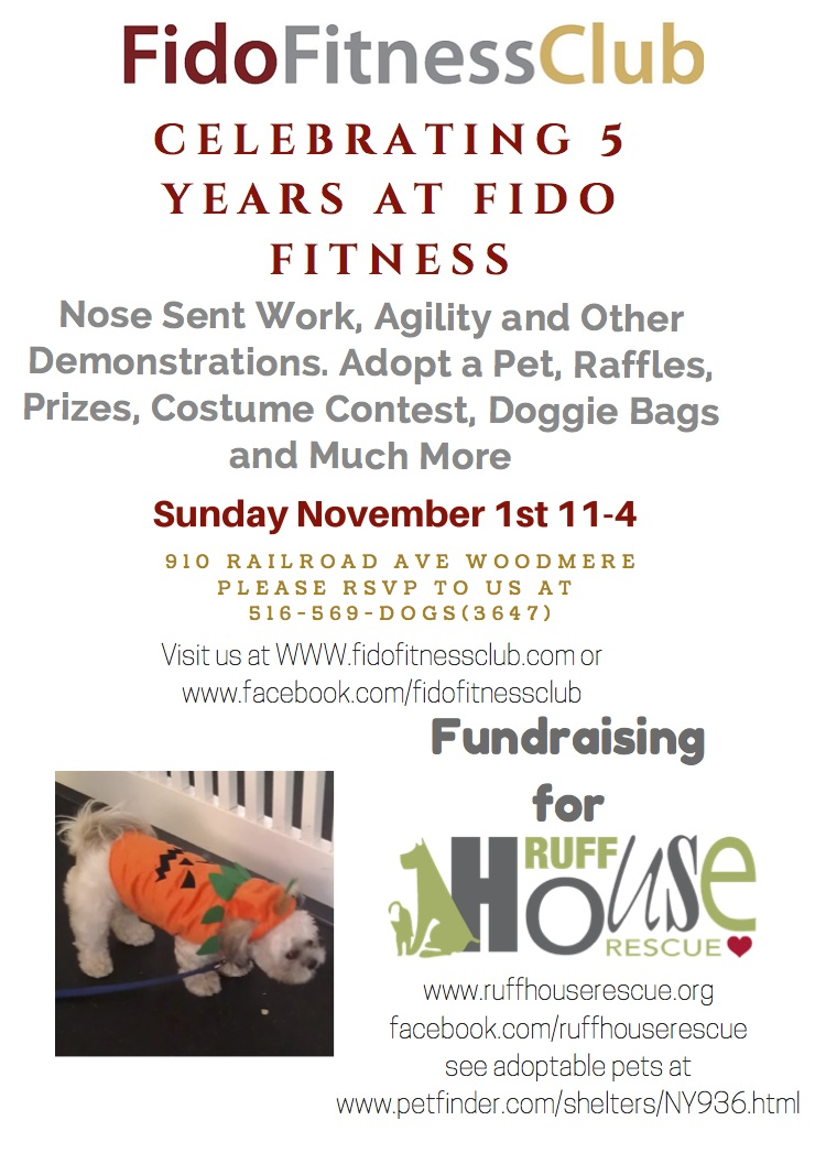 celebrating 5 years at fido fitness (1)