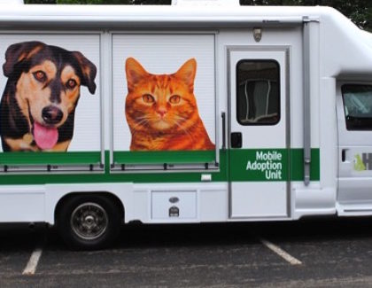 An Adoption Van will Save Lives
