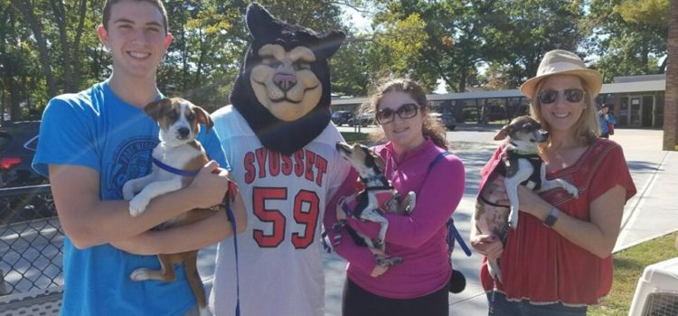 Syosset High School Dog Rescue Club Raises $800 for Ruff House!