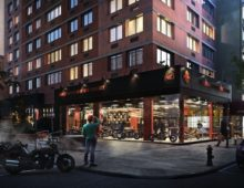Adoptions at Harley Davidson NYC  Saturday March 5th 1pm to 4pm