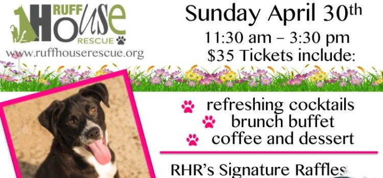 Mutts and Mimosas at the Merrick Golf Course Sunday, April 30th 11:30am – 3:30pm