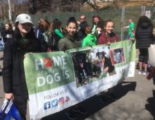 RHR had a PAWsome time at the RVC St. Patrick's Day Parade!