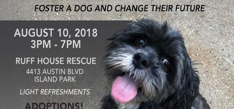 Join us This Friday 8/10 for our Yappy Hour Foster – Volunteer – Adoption Event